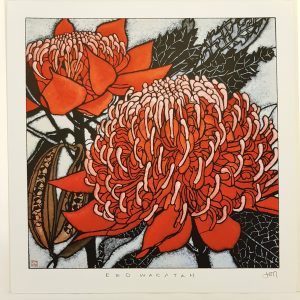 Framed Large Red Waratah Print
